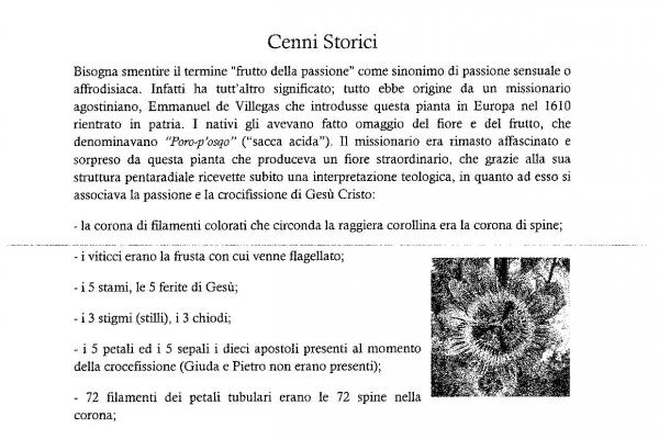 tesi-maracuya-02075420180605160023-page-00483F689C1-8CC7-CA11-B0B6-C2FC48BD2730.jpg